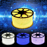 100MLED Neon Lights Aquarium SMD5050 IP65 Waterproof 220V AC LED Strip Flexible Neonlight Tubes Luces Home Christmas Party Tape