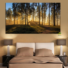Woods Sun Kyoto Japan Posters and Prints Forest Landscape Scandinavian Canvas Painting Wall Art Picture for Living Room Cuadros