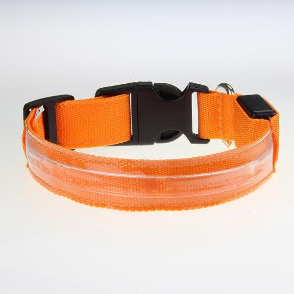 Us 1 2 32 Off Led Light Dog Pet Hundehalsband Halsband Blinken Sicherheit Leuchthalsband Hund Aa In Collars From Home Garden On Aliexpress
