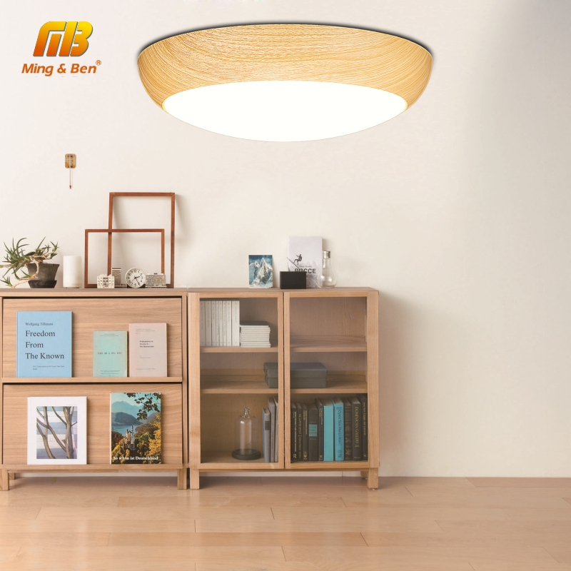 Round Panel Lamp LED Ceiling Light 18W 24W 36W 40W 48W AC 220V 3 Color Change Lighting Surface Mounted For Home Daily Lighting