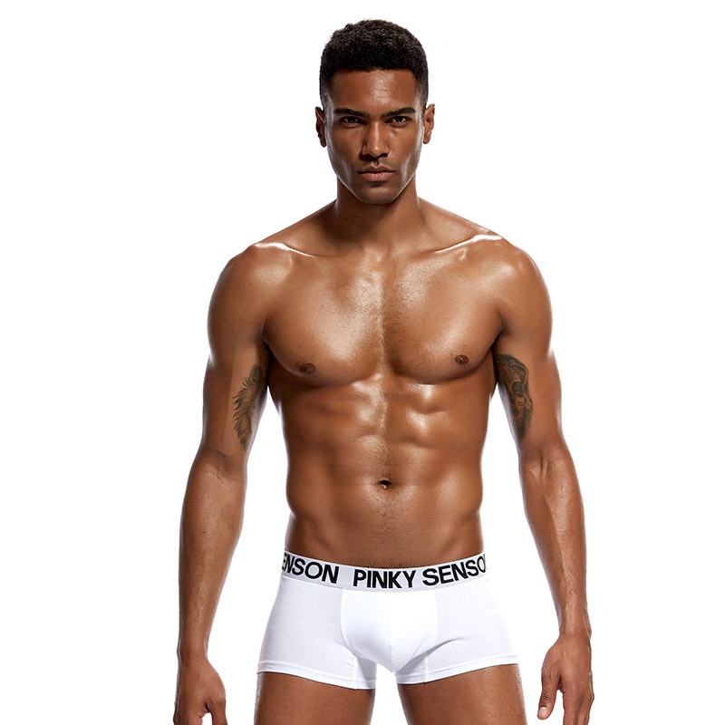 2018 Brand PINKY SENSON sexy Mens Underwear Boxer shorts Gay Penis Pouch Sleepwear panties Man fashion underwear solid boxers