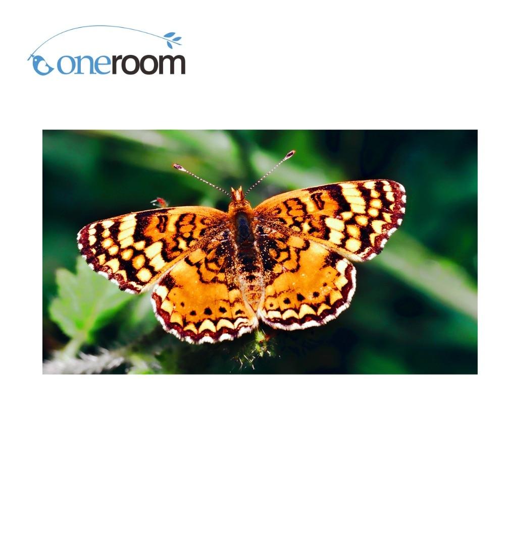 Oneroom 3D Diy Diamond orange butterfly on green leaf Needlework Embroidery Resinstone Diamond Cross Stitch Mosaic Decoration
