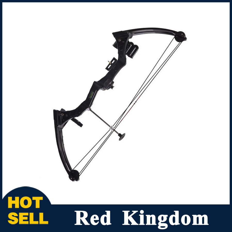 20 Pounds Compound Bow in Black/Camo Children Compound Bow for Competition Practice Outdoor Archery Hunting Shooting 50lbs archery compound bow left right handed for hunting target shooting competition sport slingshot bow camouflage black color