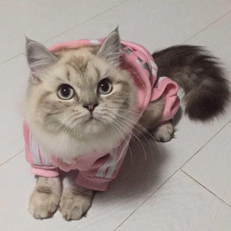 אופנה חתול בגדי לחתולים חורף חם כותנה חתול בגדי חיות מחמד חתלתול תלבושת Kedi גאטו סלעית מעיל מעילי חיות מחמד מוצרים
