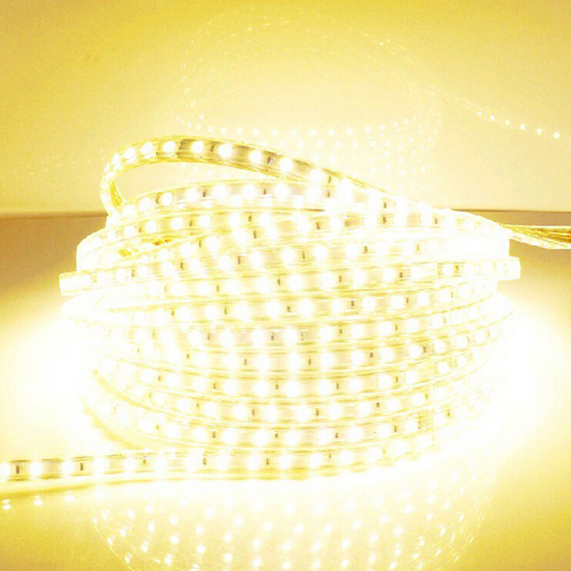 LAIMAIK LED Strip 5050 SMD kalis air IP67 Strip Light Voltan AC 220V LED Struktur Fleksibel 60leds / m Epistar 5050SMD Lampu LED