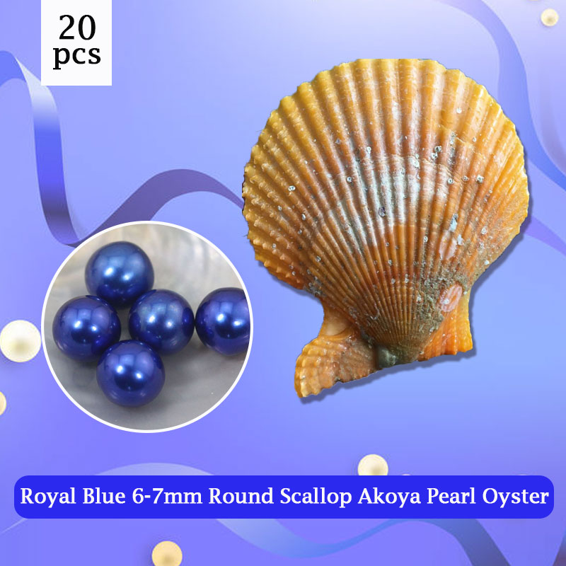 20pcs 6-7mm Round Scallop Akoya Oysters,Superior Quality Royal Blue Pearl to Make Bracelets, Ring, Necklace Free Shipping PJW283 faux fur cuff pearl beading scallop dress