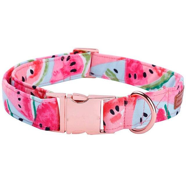 Watermelon Bow Tie 4