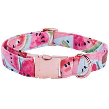 Watermelon Printed Collar and Leash Set
