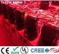 Led wash moving head luz 7x12 w rgbw leds 4em1 avançada banda luzes dmx 9/14 canais dj