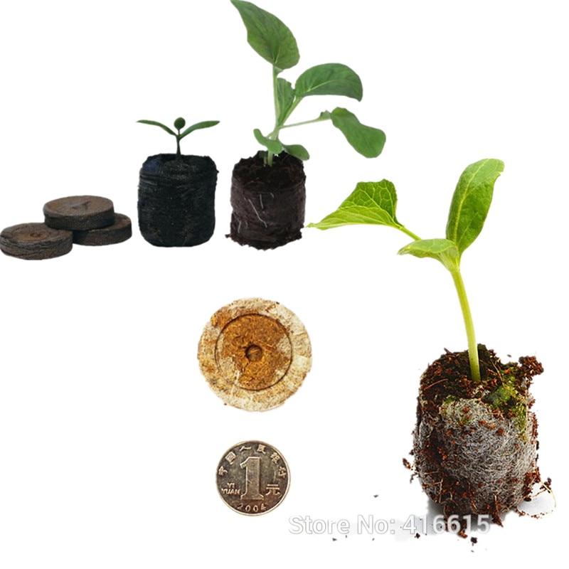 Energiek 20 Count 25mm Kwekerij Blok Turf Pellets Voor Tuin Bloemen Planten Groene Duim Zaailing Bodem Blok Voor Zaailing Teelt Talrijke In Verscheidenheid