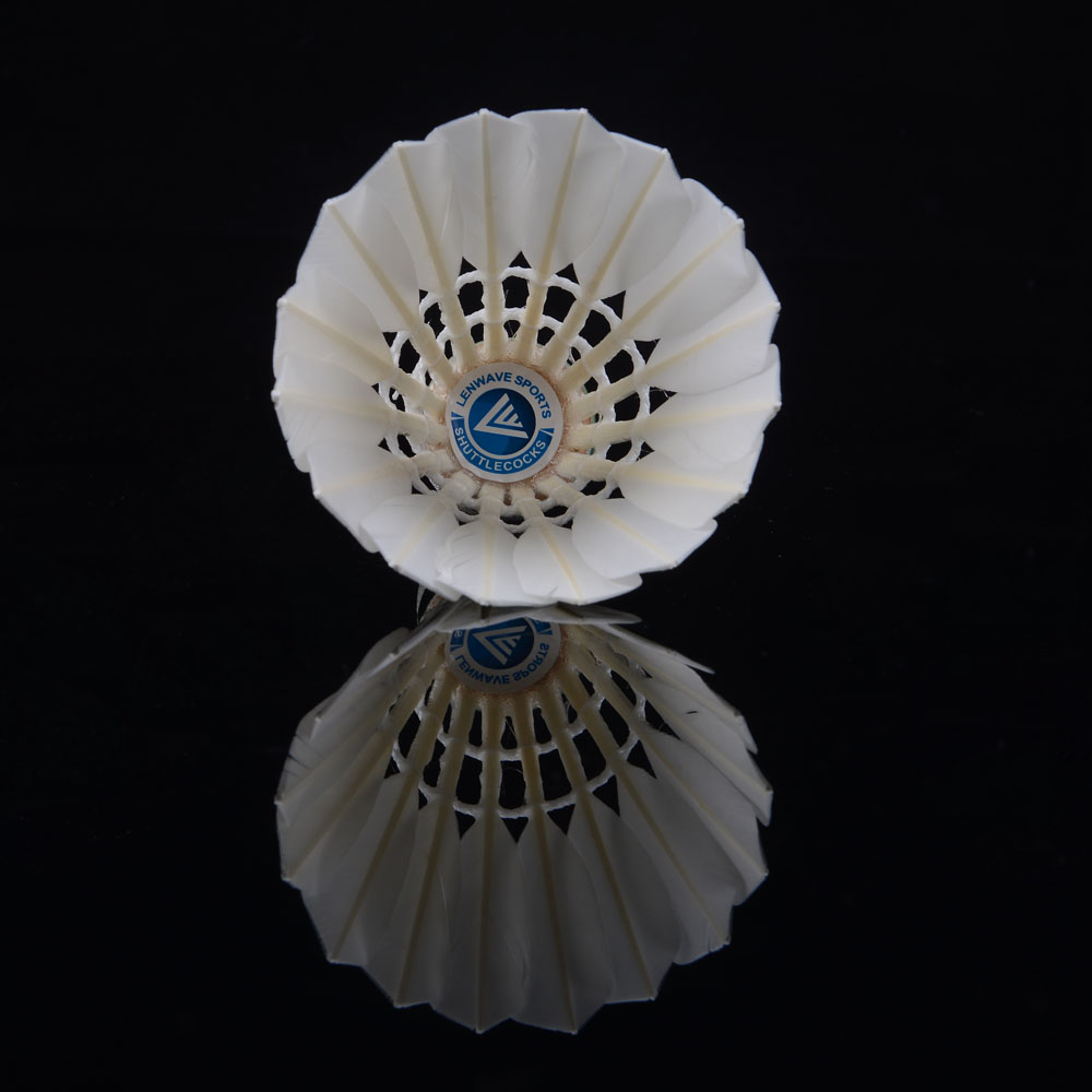 Lenwave Brand 12pcs Durable White Duck Feather Shuttlecock Badminton Birdies High Quality Free Shipping