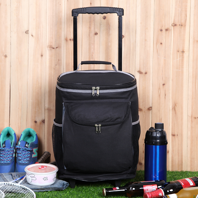Free Shipping Picnic Rod Insulation Bag Backpack Freezer Outdoor Travel Ice Pack In Bags From Sports Entertainment On Aliexpress