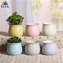 TARTADECO Free Shipping Kawaii Mini Macarooncolor Ceramic Flower Pot Vase Succulent Plants Circular Bonsai Planter TT-CFP-005