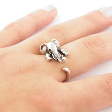 Кольцо Ring 1 2015 R301 Animal