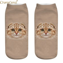 Compare Prices on Scottish Fold Cat- Online Shopping/Buy Low