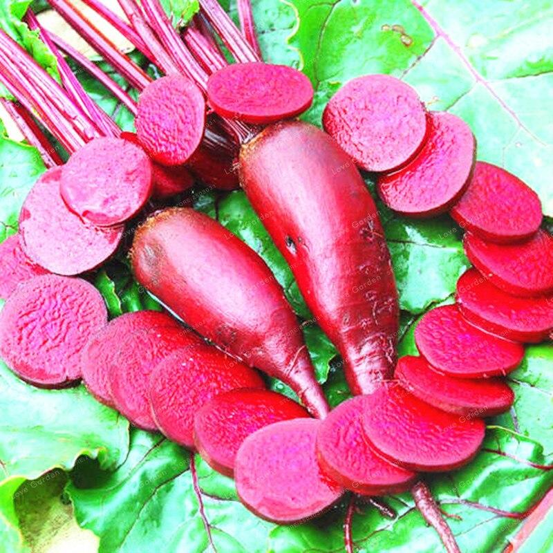 100 шт. свекла бонсай свекла растительное бонсай Ruby queen Фамильные Органические бонсай растение домашний сад Цветник завод