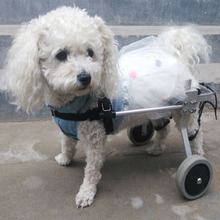 Ru seller!Stainless Steel Pet Wheelchair For Cat Dog Disabled Handicapped Hind Legs choose S/M/L SIZE yuwell diving steel tube basic type wheelchair handicapped folding back portable wheelchair home health medical equipment h050