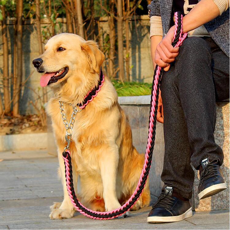 laisse pour chien en corde