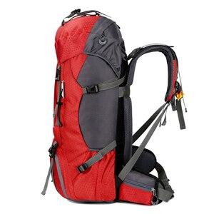 Image 3 - Nowy plecak 50L i 60L Camping torba wspinaczkowa wodoodporne górskie plecaki górskie Molle torba sportowa wspinaczka plecak
