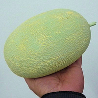 1pcs New Arrival Rubber Simulation Melon Disappear Appear Cantaloupe Stage Magic Trick Street Props Easy To