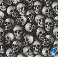 0.5Mx2M, Skull Pattern Water Transfer Printing Film HS83-S, Hydrographi Skull Vinyl Wrap, Motorcycle Parts Supplier