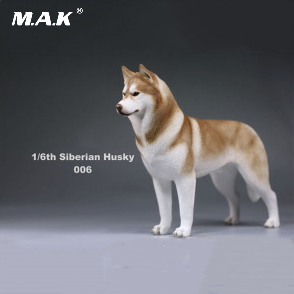 In stock 1/6(12) Dog Model Action Figure Accessory 1:6 Siberian Husky Simulation Animals Sixteenth 006 Dog Model Toys creative sled dog bulldog model pinata toys pet dog piggy bank bull terrier akita dogs siberian husky dogs save money tank model