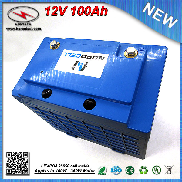 Lifepo4 12v 100ah Lithium Iron Phosphate Battery Pack