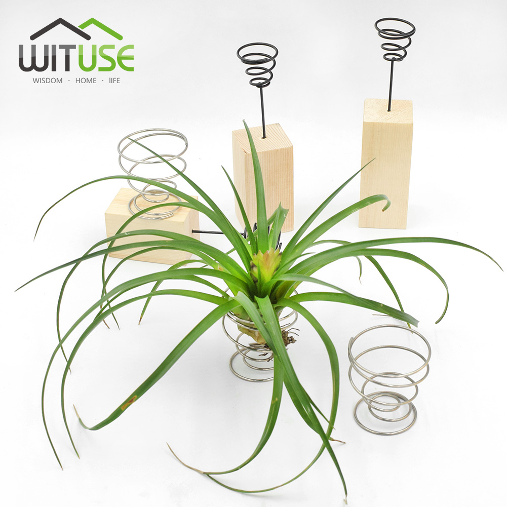 Air Plant Wall Holder Us 2 74 44 Off Wituse Cheap 3 6 Pcs Air Planter Creative Diy Garden Wedding Air Plant Hanging Rack Flower Brass Holder Christmas Decoration In