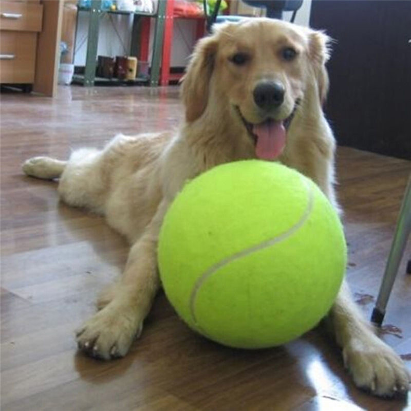 24cm Giant Tennis Ball För Hund Chew Toy Stor Uppblåsbara Tennis Ball Hund Hund Interaktiv Leksaker Pet Supplies Outdoor Cricket Dog Toy