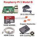2016 Original Raspberry Pi 3 Model B Starter Kit with 16GB SD NOOBS + 5V 2.5A EU/UK/AU/US Power Supply + Copper Heatsinks