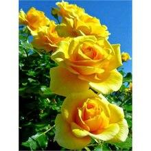 K087 желтые цветы алмазная живопись круглые бусины распродажа