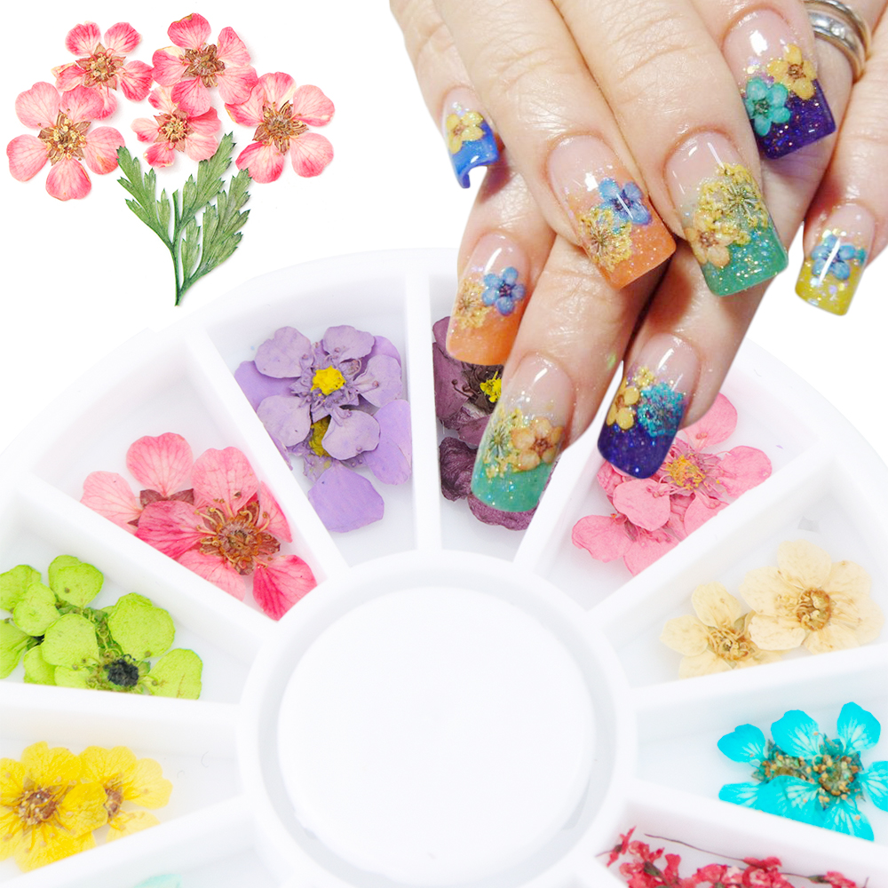 24PCS/Wheel Nail Art Decoration Dried Flower 3D Manicure Polish Summer Real Preserved Floral Leaf Mixed Dry Bloom Tips TRXHD-1