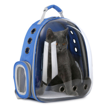 Small Pet Carrier Breathable 9 Holes Cat BackPack Capsule Large Space Dog Transparent Handbag Portable Outdoor