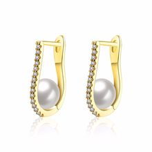 Brand New Design Fashion Hoop Earrings Setting with AAA Cubic Zirconia Free Allergy Grey simulated Pearl earrings(China)