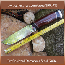 DT107 New arrival forged handmade damascus steel knife fixed blade hunting knives camping knife bayonet cs go knife faca