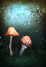 Laeacco Dreamy Jungle Mushroom Firefly Scene Children Photographic Backgrounds Customized Photography Backdrops For Photo Studio