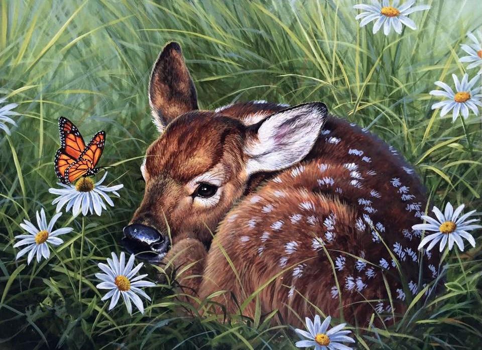 Нарисованные картинки с животными, марта рисунок