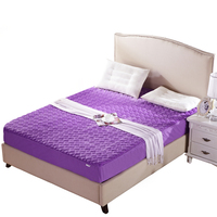 7 Colors Mattress Cover Quilted Fitted Sheet With Elastic Flannel Coral Fleece Bed Protection Pad Twin