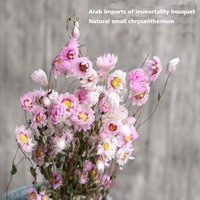 13 ~ 16 Pnie Mini Piękny Mały Kwiat Stokrotka Naturalne Suszone Kwiaty Bukiet z Łodygi Do Romantic Wedding Party Home dekoracji