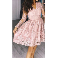 ZTVitality 2018 Summer Pink Women Dresses Elegant Embroidery Lace Vestido De Festa Sexy V Neck Perspective Vestidos Slim Dress