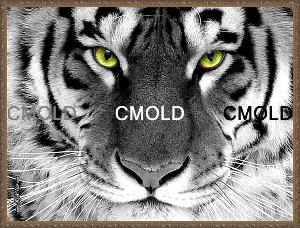 схемы вышивок лев с тигром