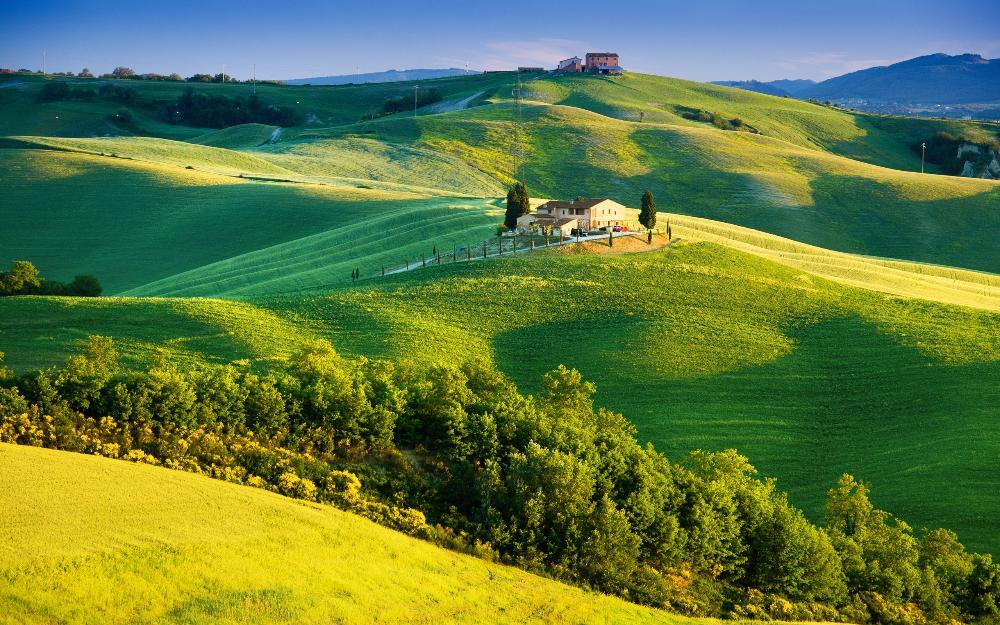 תוצאת תמונה עבור תמונות של שדות ירוקים