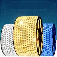 LED Strips 100meter 4plug 5730 strip 80led/Meter Christmas 220V IP67 waterproof strip outdoor garden light white/warm white/blue
