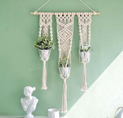 Macramé colgante cesta para plantas pared planta colgador maceta colgante para planta soportes