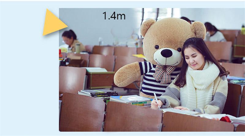 Bear-(11)_01