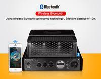 MS 30D Bluetooth amplifier tube Amplifier audio 110V 220V amplifiers Power amplifier MS 10D MKII upgrade amplificador