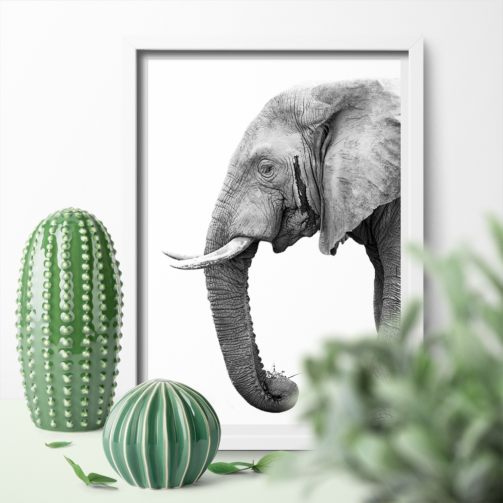 Black and white canvas poster painting wall art elephant print Nordic cute animal mural picture for living room home decoration in Painting Calligraphy from Home Garden