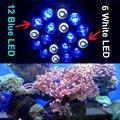 RAYWAY E27 Pa38 12blue 6white LED Aquarium Light Bulb Saltwater Coral reefs & aquarium fishes tank Light Bulb cheap price
