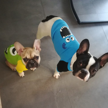 Cartoon Puppy Dog Cat Hoodie Sweatshirt Winter Pet Clothes for Small Dogs French Bulldog Pug Coat Jacket Dogs Pets Clothing Suit 2