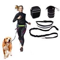 Yeni Evcil Köpek Tasma Çoğaltıcı Çift Köpek Walker Kurşun Elastik Iki Köpekler Tasma Splitter Köpek Eğitim Kolye Yaka Kontrol Uzaktan